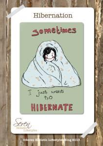Seren Blog Hibernation