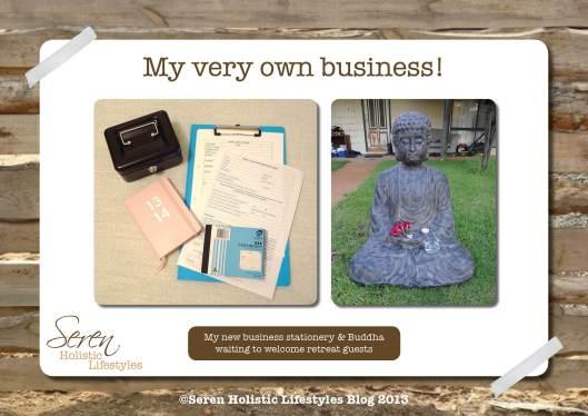 Seren Business bits